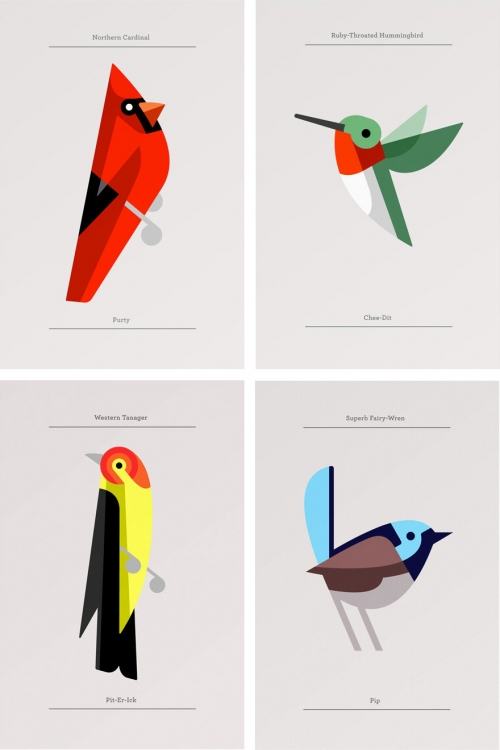 Josh Brill: Flora Fauna