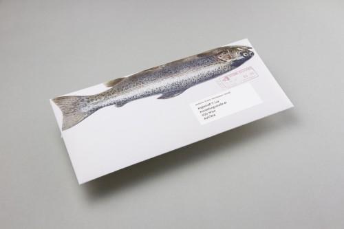 Manuel Knill - Das Marttiini Fisch Mailing 1