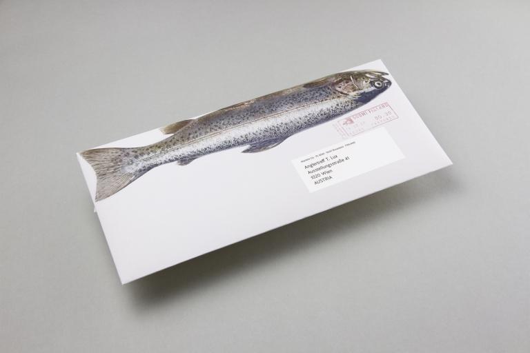 Manuel Knill: Das Marttiini Fisch Mailing