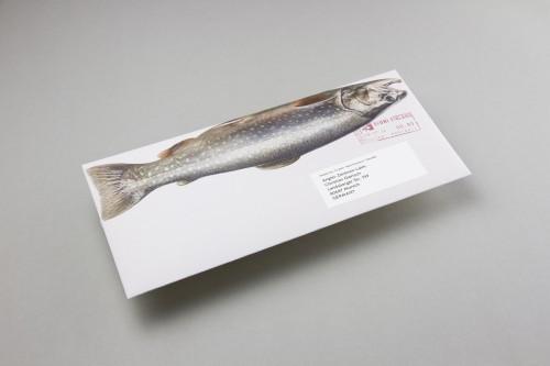 Manuel Knill - Das Marttiini Fisch Mailing 2