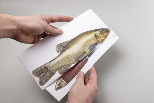 Manuel Knill - Das Marttiini Fisch Mailing 5
