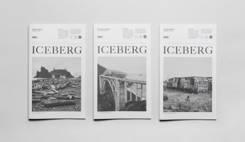 Socio Design - The Iceberg 2