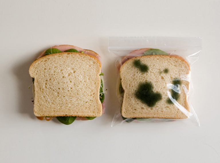 The.: Anti-Theft Lunch Bag